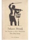 Johann Strauss - Eine Biographie des Wiener Walz..