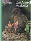 Die Amsel Arabella