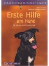 Erste Hilfe am Hund - Im Notfall das richtige tun!