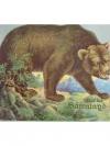 Auf der Bärenjagd