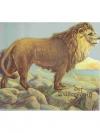 Der Wüstenkönig