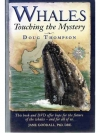 Whales: Touching the Mystery