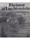 Rheinnot in Lichtenstein - Zum 50. Jahrestag der..