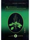 Chinesische Arzneimittelrezepte und Behandlungss..
