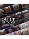 501 Quilt Bolcks
