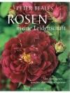 Rosen meine Leidenschaft