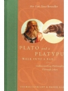 Plato and Platypus walk into a bar...