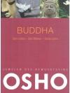 Buddha Sein Leben - Sein Wirken - Seine Lehre
